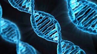 Biologi Manusia Menjawab dan Agama Menyetujui