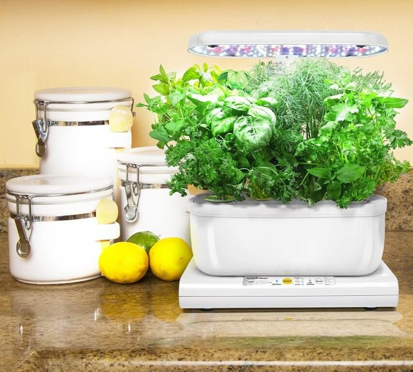Aerogarden Miracle-Gro Harvest Elite con Kit