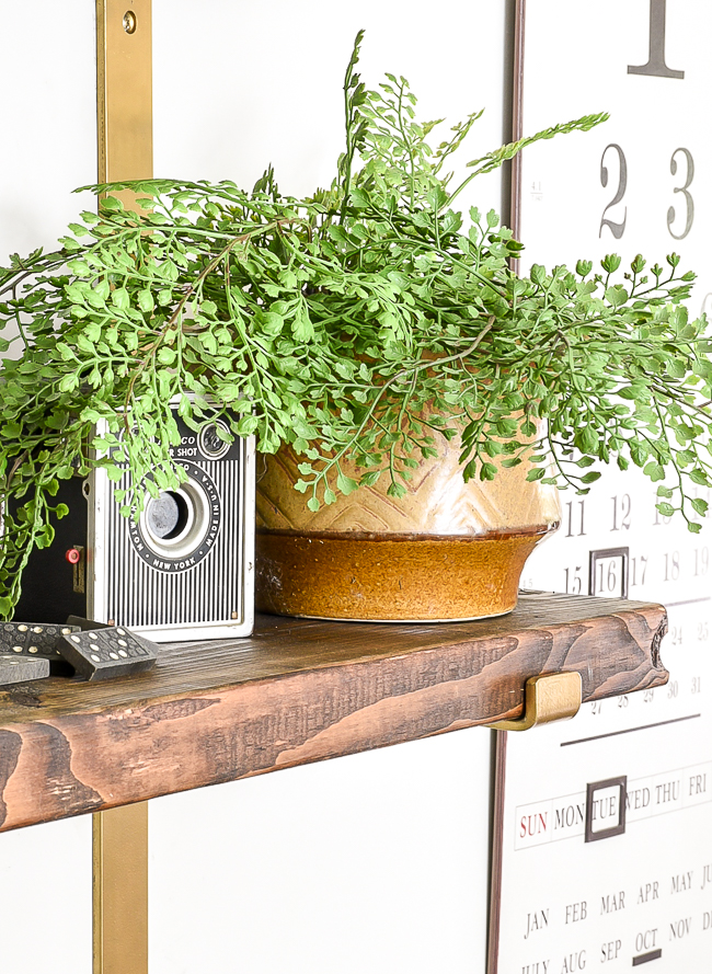 vintage camera and greenery on styled shelves