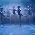 Gota D'Água: A magia do mar num grande espectáculo de dança infantil no CCB