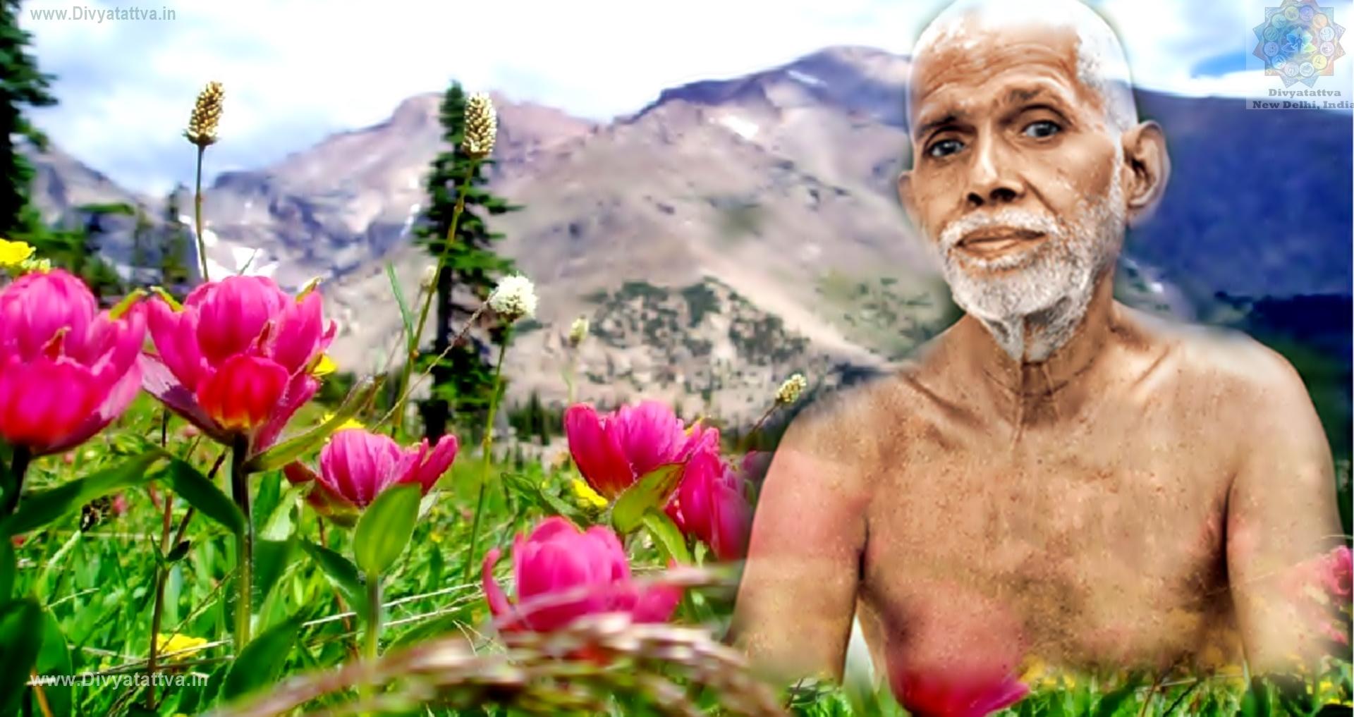 Beautiful Ramana Maharshi 4k UHD Wallpapers, Photos, Pictures, Images & Teachings