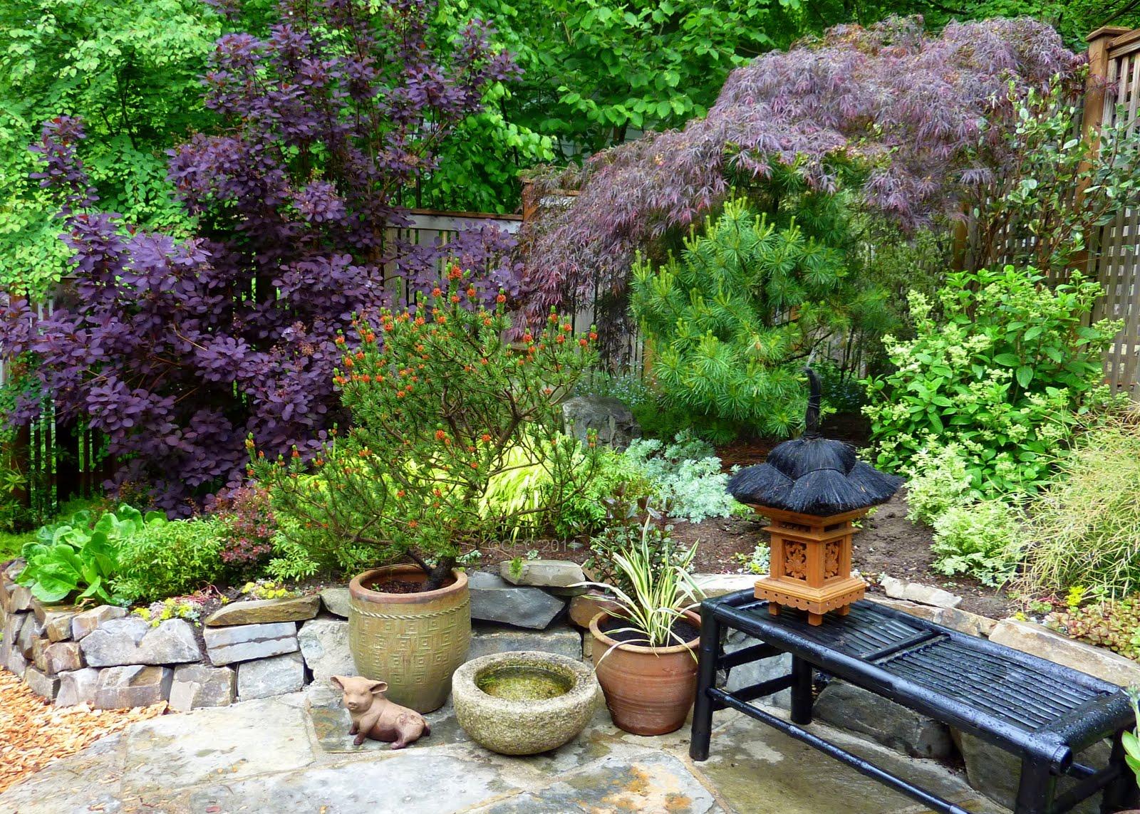 Gardener S Roost Garden Tour In Seattle Neighborhood