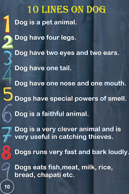 Short Few Lines Essay on Dog