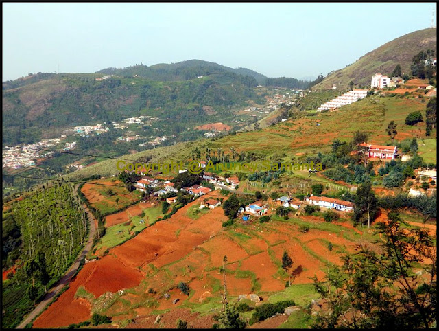 Trip to Ooty - the Queen of Hill Stations