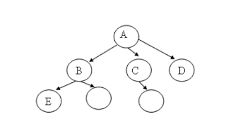 Non Linear Data Structure - Trees