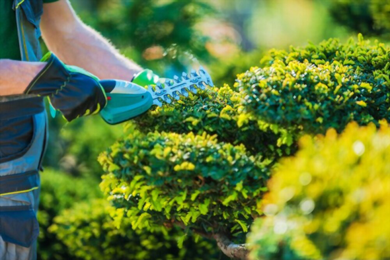 Enjoy The Tranquility of Landscaping With An Overall Living Style Improvement