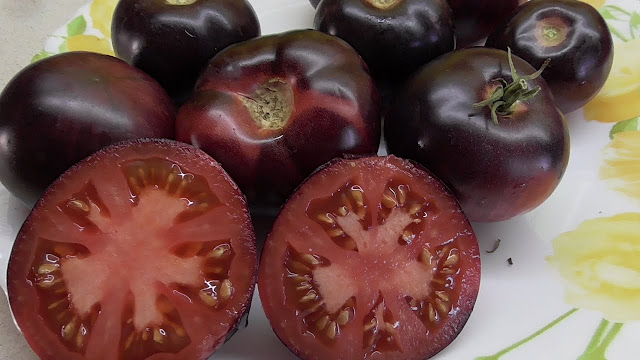 Черные помидоры, Необычные и удивительные овощи и фрукты