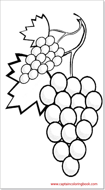 Coloring pages of grape