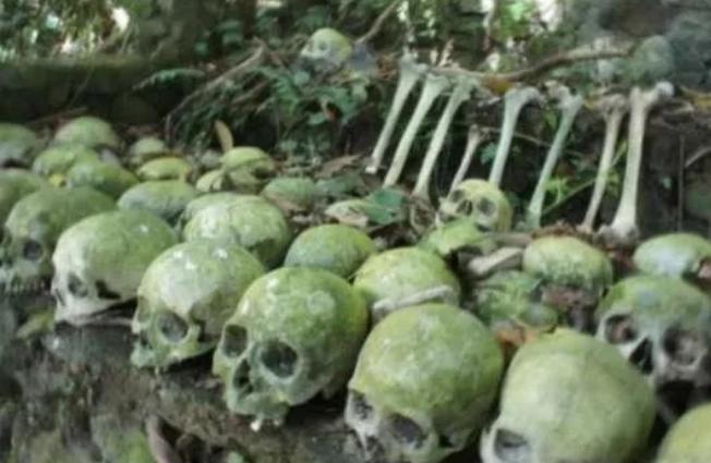 Ibadan Forest of Human Skulls AKA FOREST OF HORROR