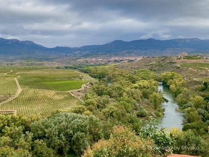 北スペインリオハのエブロ川と葡萄畑