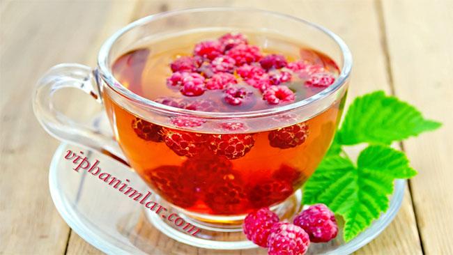 Ahududu Yaprağı Çayının Faydaları Nelerdir? - www.viphanimlar.com