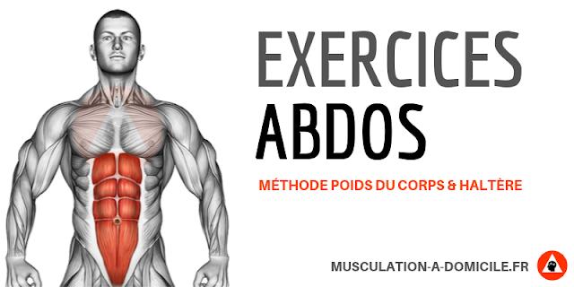 musculation à domicle exercices musculation abdominaux transverse obliques à poids du corps gainage
