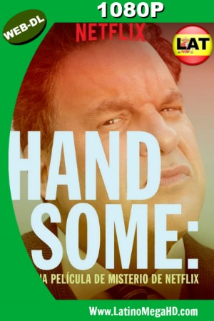 Handsome: Una película de misterio de Netflix (2017) Dual HD WEB-DL 1080P ()
