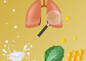 Receita Contra Bronquite: Chá de Couve com Leite e Mel