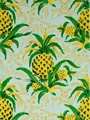 pineapples 1845