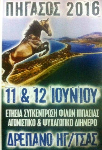Το Σαββατοκύριακο η ετήσια συγκέντρωση φίλων ιππασίας στο Δρέπανο Ηγουμενίτσας
