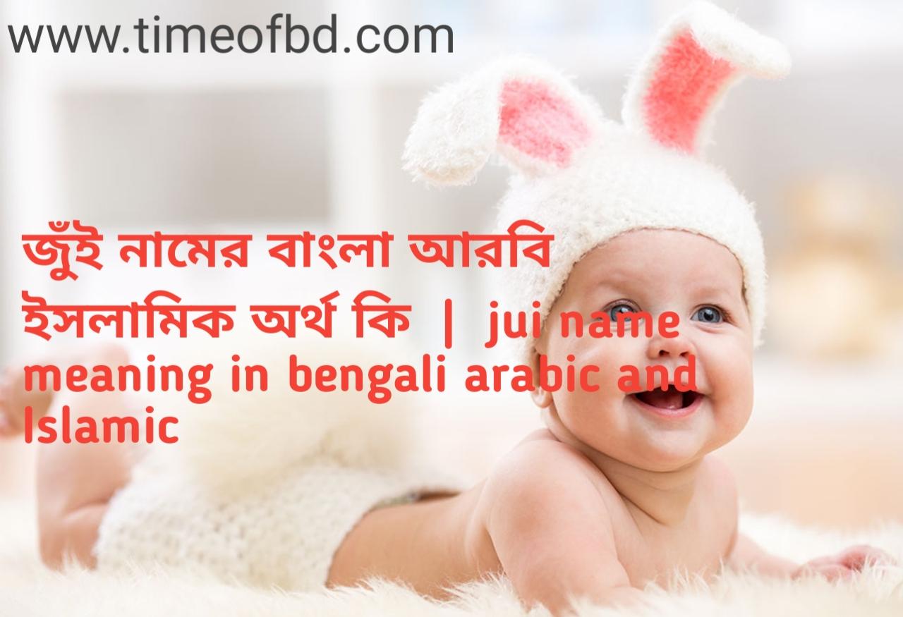 জুঁই নামের অর্থ কী, জুঁই নামের বাংলা অর্থ কি, জুঁই নামের ইসলামিক অর্থ কি, jui name meaning in bengali