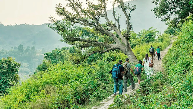 Walking to the Eco Lodge in Corbett