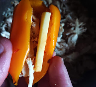 dairy free cheese and chicken stuffed into pepper