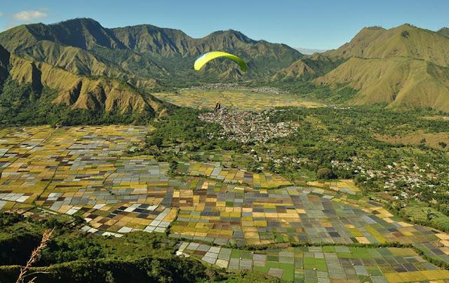Panorama Bukit Pergasingan Lombok