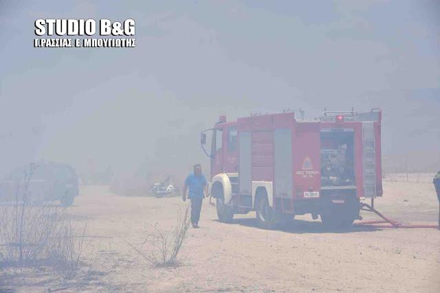 Πυρκαγιά εκδηλώθηκε στα Ίρια Αργολίδας