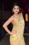 Yamini Bhaskar sizzling in saree-thumbnail-15