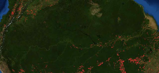 A área em verde escuro é a floresta amazônia Destaca-se a escasez aguda de fogos, com exceção das áreas de fronteira. Fonte: FIRMS ou Fire Information for Resource Management System