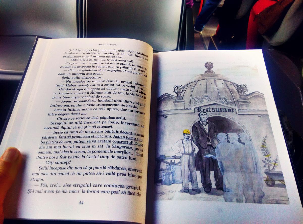 Cartea Pricoliciului de Adina Popescu