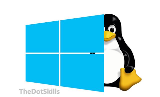 Windows & Linux