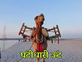 Panchtnatra ki kahani