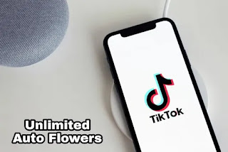 mycheat net tiktok - tiktok unlimited flowers and vip tools