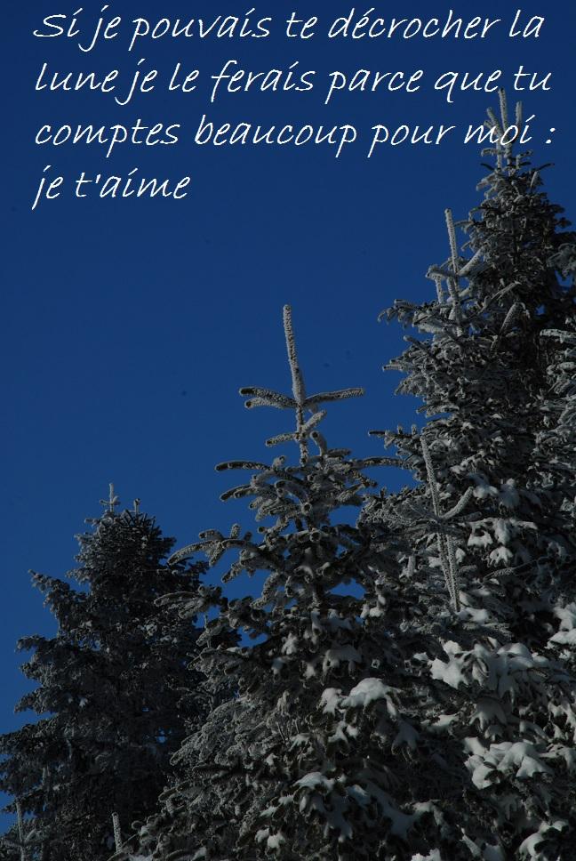 Phrase Pour Dire Je T Aime : phrase, TEXTE, T'AIME, MESSAGES