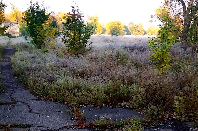 Сентябрьские заморозки Луганск