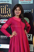 Monal Gajjar in Maroon Gown Stunning Cute Beauty at IIFA Utsavam Awards 2017 022.JPG