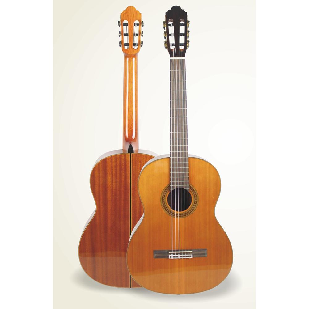 Đàn Guitar Valote giá rẻ âm thanh hay cho người mới tập