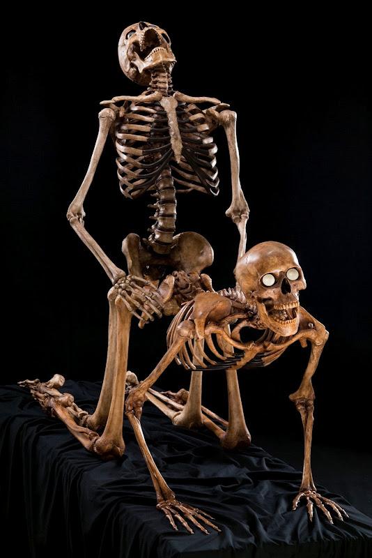 Jean-Marc Laroche - Skelet sex, lad skeletterne rasle!