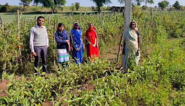 प्रधानमंत्री आत्मनिर्भर किसान योजना