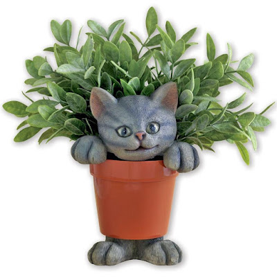 Cat in the Planter