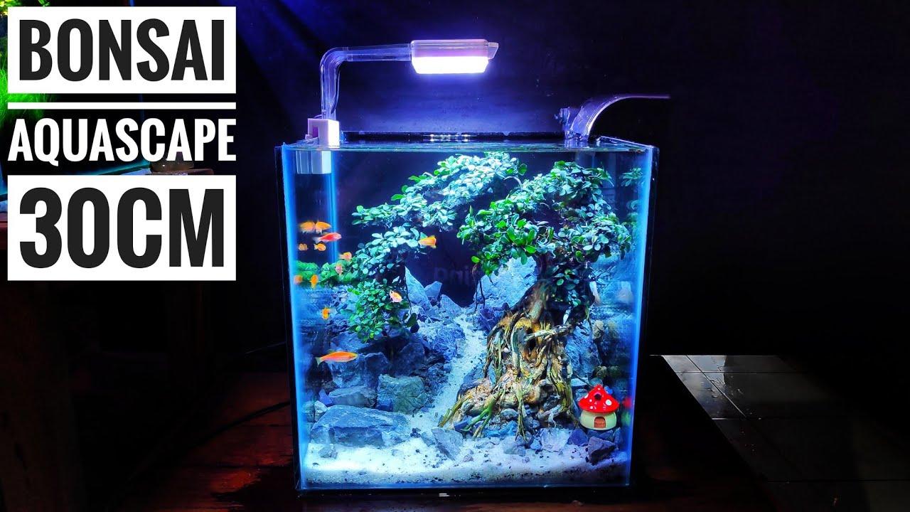 Contoh Dan Referensi Desain Aquascape Mini Terbaik