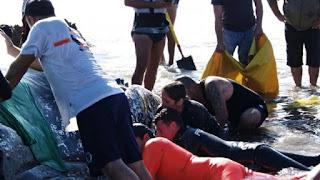 Los ciudadanos mostraron su gran solidaridad en las extensas jornadas de trabajo para poder devolver a su lugar de origen a la ballena.
