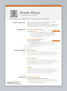 template CV curriculum