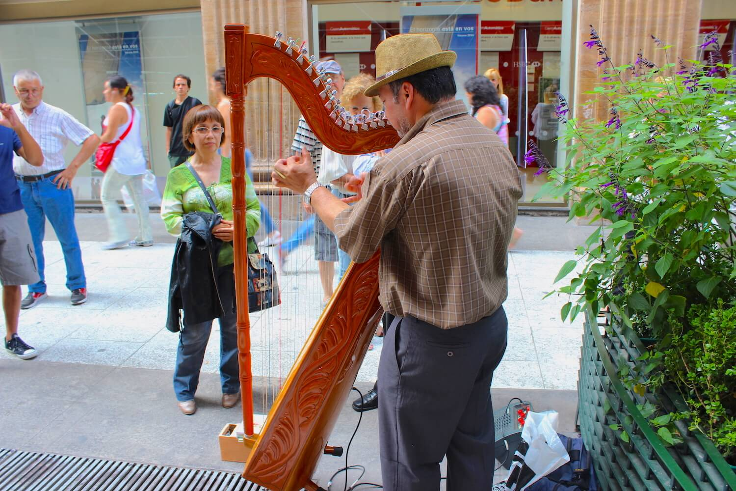 buenos aires street music harp