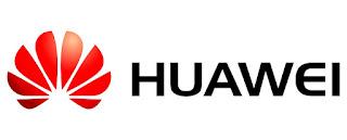 Gestores De Recursos Humanos - Huawei - Maputo