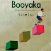 AUDIO | SLIMSAL - BOOYAKA | Download