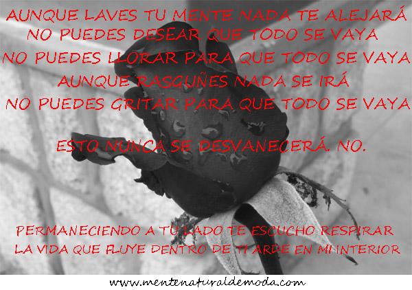 Understanding Evanescence canción traducida en español