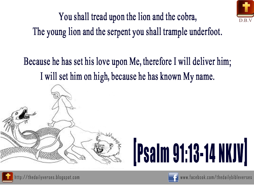 Daily Bible Verses: Psalm 91:13-14