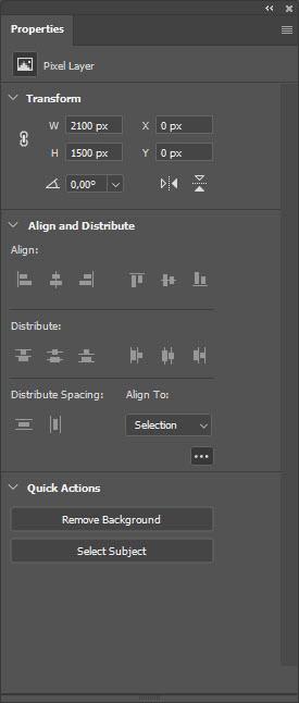 Properties when pixel layer is selected