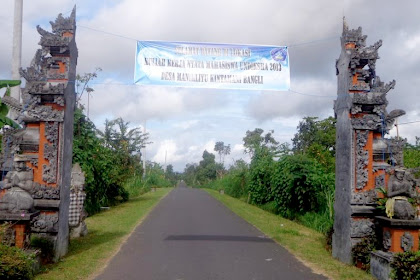 Manikliyu Pine Forest (Recommended For Tour in Bali)