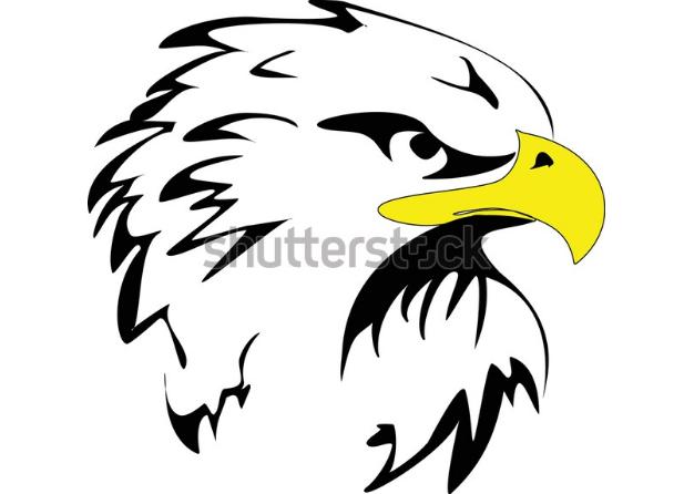 vector illustration eagle head