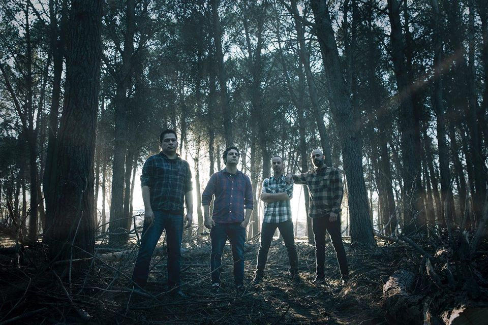 Firewood photo band